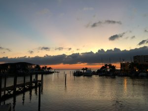 boats docks | Tampa Office | Wellness Psychological | Therapy Services | Florida