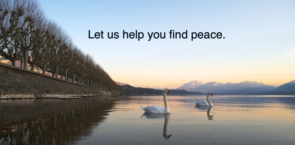 Let us help you find peace | Anxiety Treatment | Wellness Psychological Services | Tampa Bay, FL
